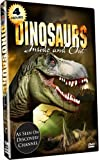 TIMELESS DINOSAURS INSIDE & OUT