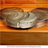 IRobot Roomba 4220 Discovery SE Intelligent Floorvac Vacuuming Robot, Grey