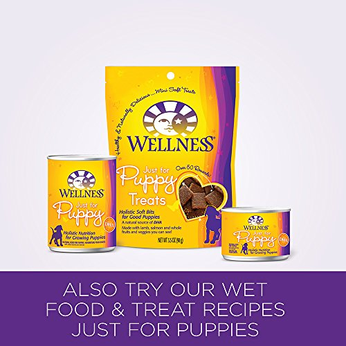Wellness Complete Health Natural Dry Puppy Food Chicken
