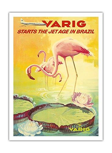 brasilien-varig-flug-gesellschaft-jets-rosa-flamingos-flamingo-rosados-waten-in-einem-lilien-teich-v