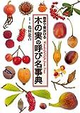 散歩で見かける 木の実の呼び名事典