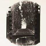 Winter Forever [Vinyl LP]
