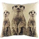 Evans Lichfield Meerkats Cushion, 18 x 18 inch