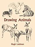 img - for By Hugh Laidman Drawing Animals (Dover Art Instruction) (Dover Ed) book / textbook / text book