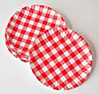 What Is It? Reusable Red & White Gingham Checkered Picnic / Dinner Plate