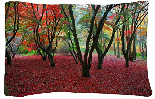 Microfiber Peach Standard Soft And Silky Decorative Pillow Case (20 * 26 Inch) - Nature Autumn Trees front-976106