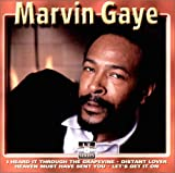 echange, troc Marvin Gaye - Sexual Healing