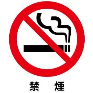 禁止マーク/禁煙 片面シール 10cm×10cm