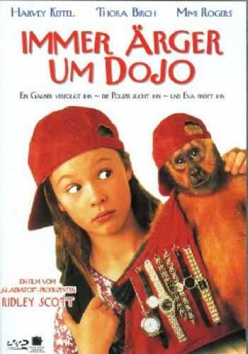 Immer Ärger um Dojo