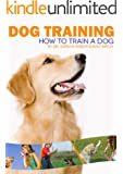Dog Training (how to train a dog)