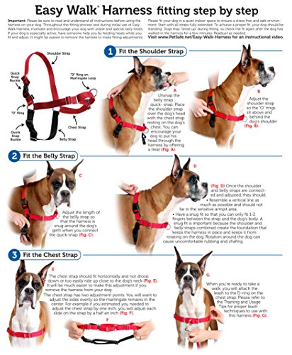 easy walk harness size chart for dogs  easy  get free EZ Wiring 21 Circuit Diagram EZ Wiring 21 Circuit Diagram