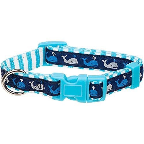 petco-blue-whale-nylon-adjustable-dog-collar-for-necks-9-14-small