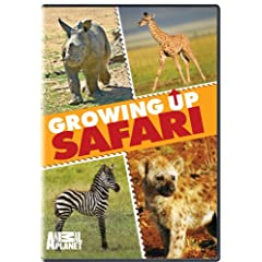 """ENTER TO WIN A COPY OF """"GROWING UP SAFARI"""" FROM ANIMAL PLANET / GENIUS PRODUCTS 1"""