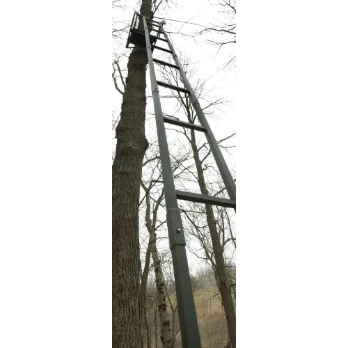 Loggy Bayou Ladder Stand