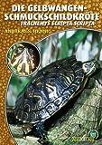Die Gelbwangenschmuckschildkröte: Tracheyms scripta scripta