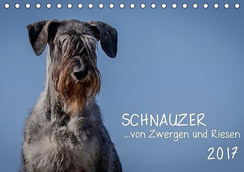 schnauzer-von-zwergen-und-riesen-2017-tischkalender-2017-din-a5-quer-schnauzer-in-viele-varianten-un