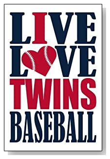 Live Love I Heart Twins Baseball lined journal - any occasion gift idea for Minnesota Twins fans from WriteDrawDesign.com