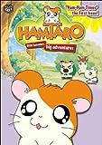 echange, troc Hamtaro 6: Ham Ham Times First Issue [Import USA Zone 1]