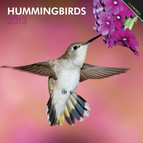 51DNHnm0T4L Hummingbird Calendar 