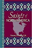 img - for Saints of North America by Vincent J. O'Malley (2004-09-01) book / textbook / text book