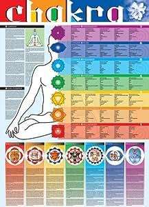 Empire 536747 Educational - Bildung Yoga - Chakra Bildungsposter Plakat Druck - Version in Englisch - Größe 68 x 98 cm