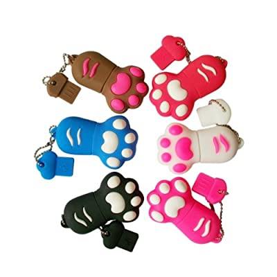 Cute Kitten Cat's PAW High Speed USB 2.0 High Speed Flash Pen Drive Disk Memory Stick Shock Proof Great Gift (Ricco® 05-017)
