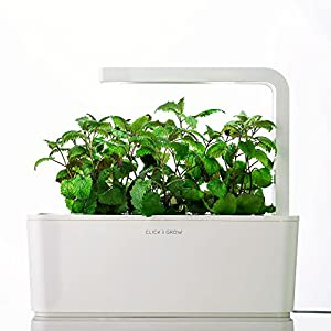 Click Grow Smart Herb Garden Indoor Growing Kit Shgs1