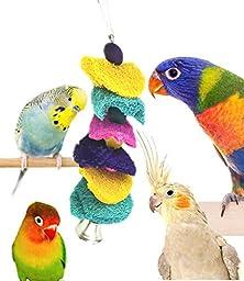 Color Delight Loofah Sponge Bite-resistant Bird Toy