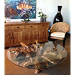 Teak root Coffee Table Including 55 Inch Round Glass Top made by Chic Teak