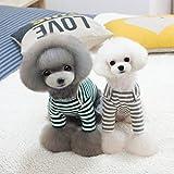 【ノーブランド品】犬 猫 ストライプ Tシャツ セーター ペット 秋 アパレル 2色5サイズ選べる - 緑, XXL