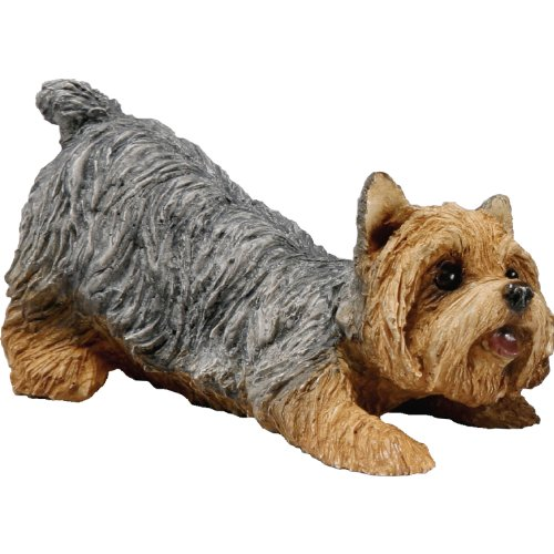 Sandicast Small Size Yorkshire Terrier Sculpture - Crouching