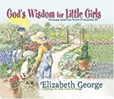 Gods Wisdom for Little Girls: Virtues and Fun from Proverbs 31
