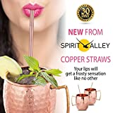 3 DAYS SALE! Moscow Mule Copper Mugs & Straws Set Of 2 - with 2 FREE bonus eBooks by SPIRIT VALLEY- 16 Oz- MONEY BACK guaranteed!
