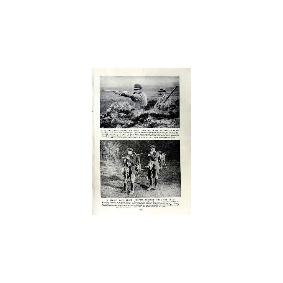 c1920 GROUSE SHOOTING ENGLAND PHEASANT HUNTING YACHTS