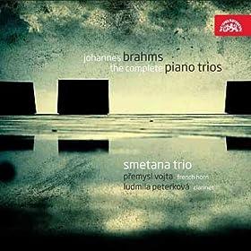 Trio for Piano, Violin and Cello No. 1 in B major, Op. 8: I. Allegro con brio
