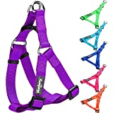 """Blueberry Pet Step-in Harnesses Classic Solid No Pull Dog Harness Adjustable Made For Last - Dark Orchid, Nylon 1"""" Large"""