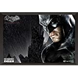 Hungover Batman Poster Arkham City Artwork Special Paper Poster (12x18 Inches)