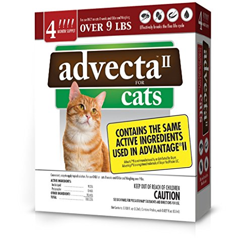 advecta-ii-flea-treatment-for-cats-over-9-lbs-4-month-supply