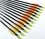 Shiny Black � Fiberglass Target Practice Arrows 22' for Children (1 Dozen)