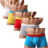 Astarin Mens Modal Colored Trunks Underwear comfortable Cotton Boxer Briefs (Medium, 5 Pack)