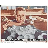 Cool Hand Luke POSTER Movie (1967) Style C 11 x 14 Inches - 28cm x 36cm (Paul Newman)(George Kennedy)(J.D. Cannon)(Strother Martin)(Dennis Hopper)(Anthony Zerbe)(Lou Antonio)