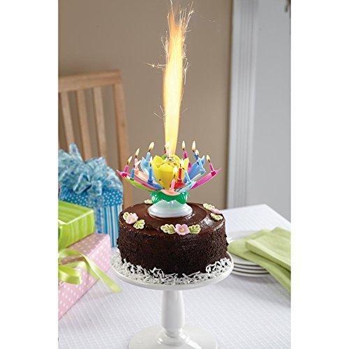 The Amazing Happy Birthday Candle (Rainbow)