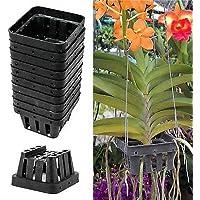 """10 X Black Plastic Basket 2.7 """" X 1.7 """" Flower Plant Pot Orchid Vanda Fertilizer"""