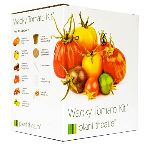 plant-theatre-kit-wacky-tomatoes-6-fantastischen-sorten-zum-anbauen-ein-grossartiges-geschenk