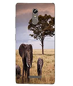 Case Cover Elephant Printed Multicolor Soft Back Cover For Gionee S6s
