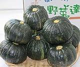 北海道ふらの産 坊ちゃんかぼちゃ(ぼっちゃんかぼちゃ) 10個入り