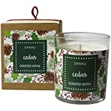 Danali New York Christmas Gift Votive Candle With Cedar Fragrance