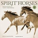 Spirit Horses 2014 Wall Calendar