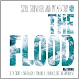 Soul Survivor & Momentum The Flood by Soul Survivor & Momentum (2013) Audio CD