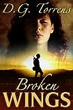 Broken Wings (Contemporary Romance)